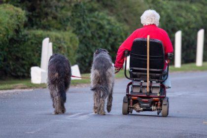 honden voor mensen met een scootmobiel