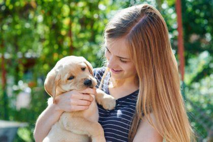 Wat te doen als je Labrador pup je steeds bijt